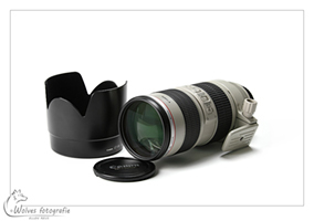Canon EF 70-200mm F2.8 L IS USM - Productfotografie - Door: Ellen Reus - Wolves fotografie