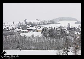 Winter landschap - Bayerischer Wald - Duitsland - Landschapsfotografie - door: Ellen Reus - Wolves fotografie