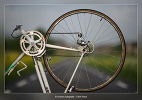 Fietswiel in kleur - Productfotografie - Door: Ellen Reus - Wolves fotografie