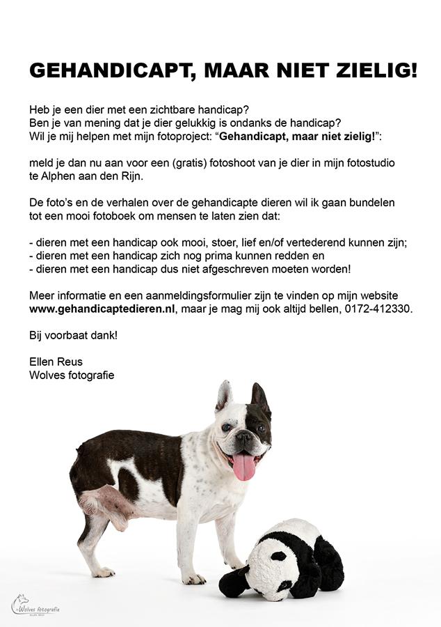 """Flyer gehandicapte-dieren-project: """"Gehandicapt, maar niet zielig! - www.gehandicaptedieren.nl - Wolves fotografie"""