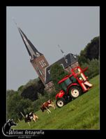 Met de tractor de koeien binnenhalen - Moderne tijden - Landschapsfotografie - door: Ellen Reus - Wolves fotografie