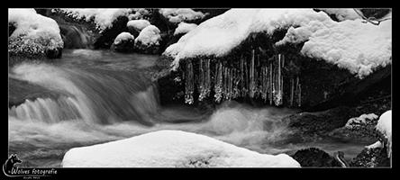 Water, sneeuw, ijs en pegels - Bayerischer Wald - Duitsland - Landschapsfotografie - door: Ellen Reus - Wolves fotografie