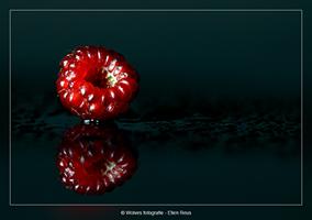 Japanse Wijnbes - Productfotografie - Door: Ellen Reus - Wolves fotografie