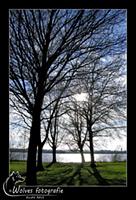Zegerplas - Alphen aan den Rijn - Landschapsfotografie - door: Ellen Reus - Wolves fotografie