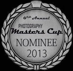 Color Master Nominee 2013